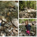 Princess Peach skipping rocks at a river in Vermont. She couldn't have been happier!