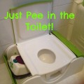 Toilet Training a Toddler